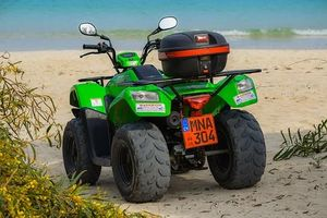 Rent A Buggy - 53369 bestsellers